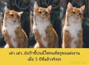 image-A672_589EB9C8