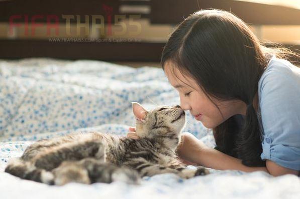 10 อาการที่เจ้าแมวเหมี่ยวของคุณ แสดงอาการบอกความรักต่อเรา