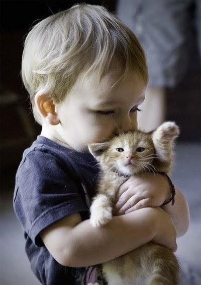 รวมรูปแมวน้อยกับเจ้าหนูน้อยเเสนน่ารัก อะไรจะพอดีกันขนาดนี้!!